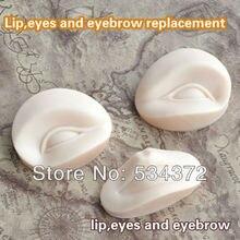 2Set *3D Permanent Makeup Eyebrow Lips Practice Module+ 2 pcs Eyebrow Stencil Shipping Free