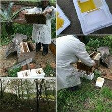 Улей коробка урожая улей королева опыление пчеловодства для пчеловодства копуляции королева резерв пчеловодства инструмент Горячая улей коробка