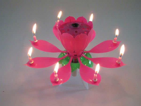 Lotus Shaped Music Birthday Candle 100 Pcs In A Carton Blister Package