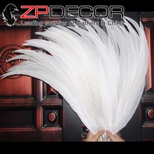 Retail and Wholesale from ZPDECOR 26-28inch(65-70cm) 50pieces/lot Fluffy Bleached White Silver Pheasant Feathers