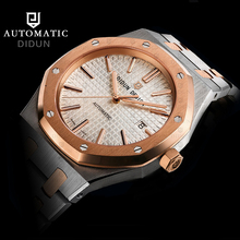 DIDUN Watch Men Top Brand Luxury Mechanical Automatic Watch Military Business Simple Male WristWatch Waterproof 30m Watch