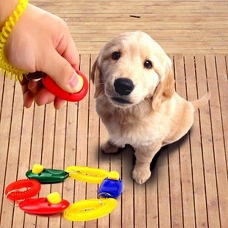 1 Stuk Pet Kat Hond Training Clicker Plastic Nieuwe Honden Klik Trainer Hulp Te Verstelbare Polsband Geluid Sleutelhanger Voor Snelle Verzending
