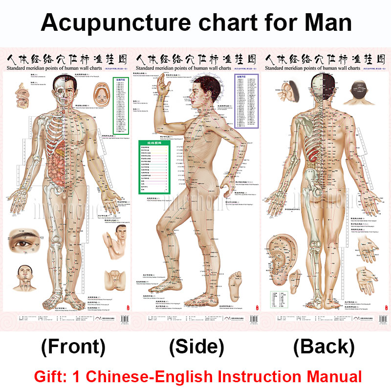 Large REFLEXOLOGY Foot Pressure Points Poster English-Vietnamese-Chinese-Spanish