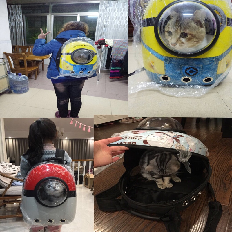 cat carrier / best cat backpack