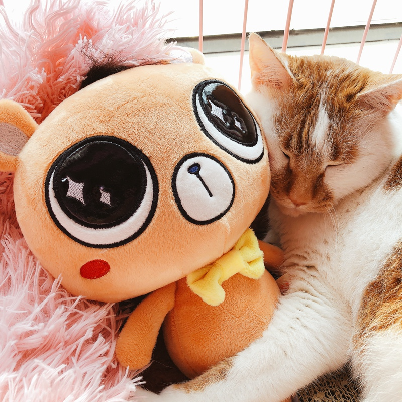 Cute big eyes rabbit plush toy cat pillow Cushion Kids Children Lover Valentines Gift Toy Stuffed Kawaii Animal Cartoon Love Do
