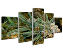 5  Panel Buds Weed Canvas Set,  Print Cannabis Lover Wall Print Art