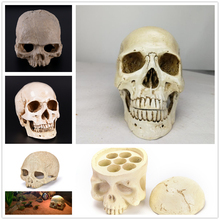 Human Head Resin Replica Medical Model Lifesize 1:1 Halloween Home Decoration High Quality Decorative Craft Skull non toxic pvc adult skull model 1 1 three removable tooth clinic simulation skulls cranium medical college decorative figurines