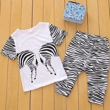 Zebra Boys Kids Hoodies Sportswear shirt Tops Clothes and Pants Outfit Set 2-7