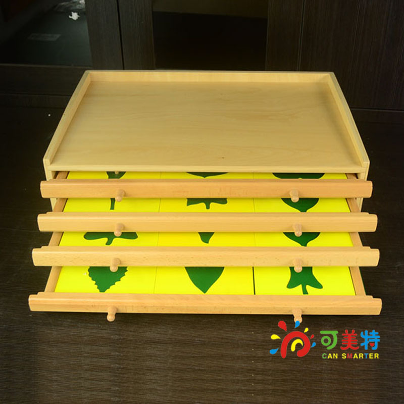 Montessori Education Four-layer Leaf Cabinet Beech Wood Science Tools Early educational toys  Can Smarter gray underserved populations in science education