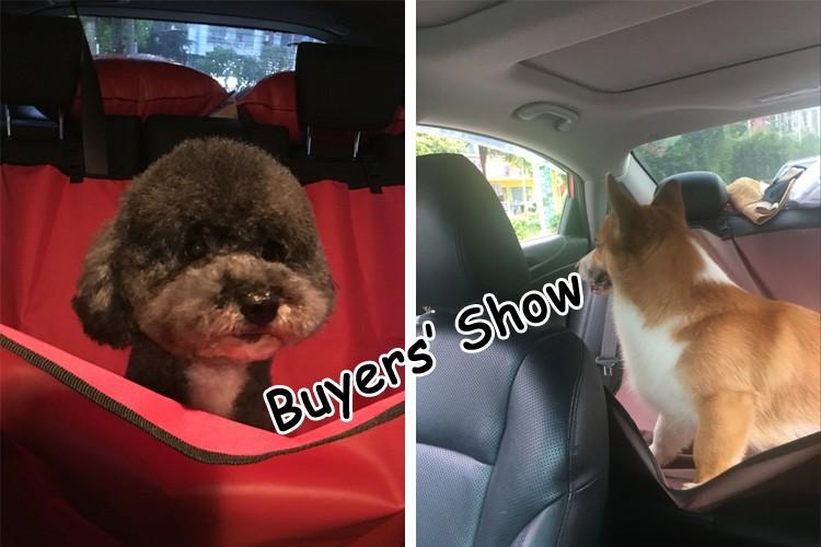 buyers_show_3