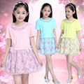 Kids Girls New Summer Princess Korean Floral Dress Clothing Mesh Pink Yellow Blue Flowers Printing