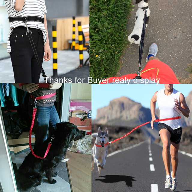 [TAILUP] Pet Dog Running Leashes Hands Freely Great for Walking ,dog leash Rope with reflective Jogging dog collars leash CL109