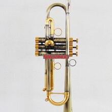 Профессиональный античный отделка труба B-плоские монельные клапаны с Чехол