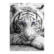 Black and White Decorative Diamond Painting Moge Full Round Tiger animal New DIY Sticking Drill Cross Embroidery 5D simple