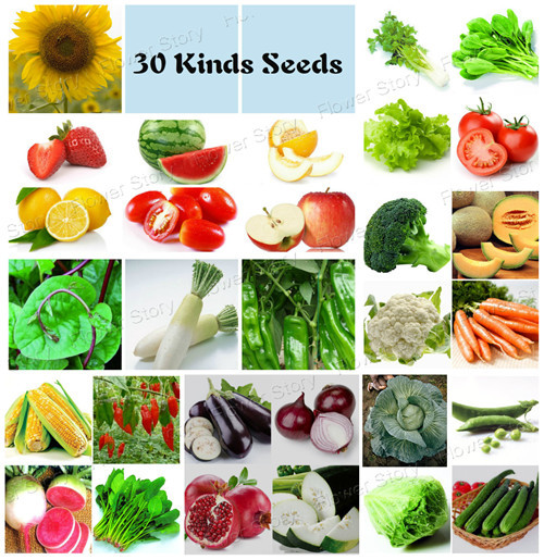 30 Different Vegetables And Fruits 4750 Seeds Decorate