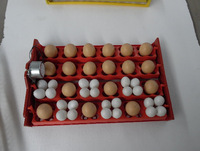 24 Automatic Hatching Machine Multifunction Egg Dish Bird Egg Duck and Goose Dove Disc