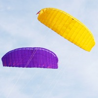 NEW ARRIVE 5 SQUARE FOUR LINE KITES PARAFOIL PARACHUT SPORTS BEACH KITE EASY TO FLY FOR OUTDOOR TOY FUN