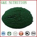 Best Nutritional Supplement Organic Spirulina Powder  extraction   30:1  1000g