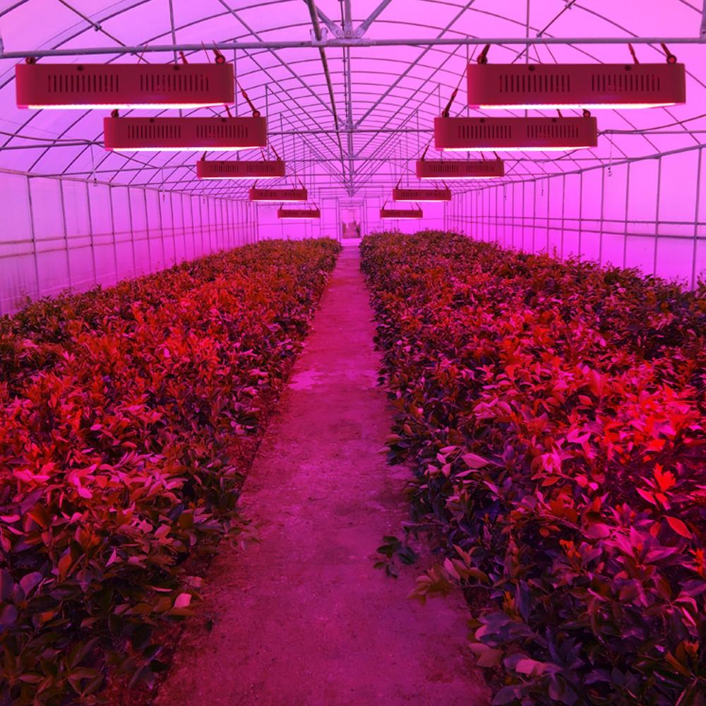 Full Spectrum LED Plant Grow Lights 52