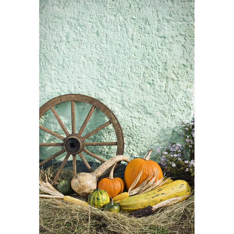 Straw countryside photo background for kids harvest autumn photography backdrops for photo studio camera photophone HA-207 harvest hunting