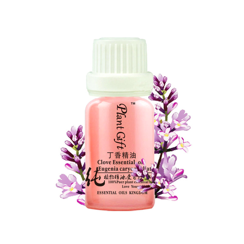 lavender and almond aliexpresscom buy 100 pure plant essential oils sri lanka