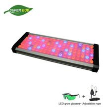 2019 Ultra-thin Orpheus LED grow light full spectrum CREE 500W 1000W 2000W VEG& BLOOM horticultural plant growing light indoor english orpheus