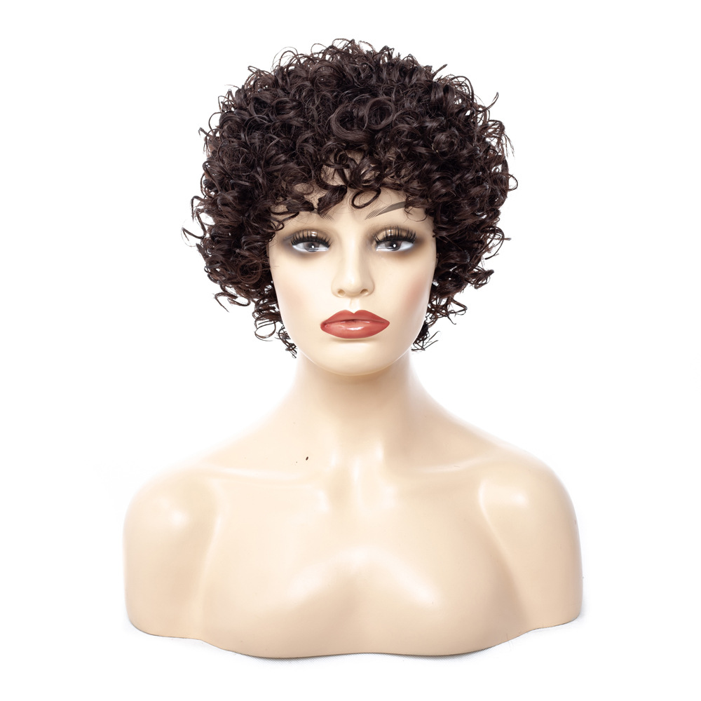 Image 2 - Short Kinky Curly Afro Wig Heat Resistant Wigs For Women Brown Nautral Cosplay Costume Party Synthetic Hair YxCheris-in Synthetic None-Lace  Wigs from Hair Extensions & Wigs