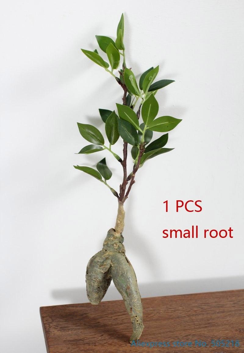1 шт. искусственные гибкие мягкие пластиковые сухие ветки корень дерева украшения дома сценические свойства F414 - Цвет: Small root