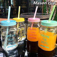 Summer Ice Cream Fruit Installed Cold Drink Infusion Bottle Cute Water Bottles Mason Cup Jar Mug