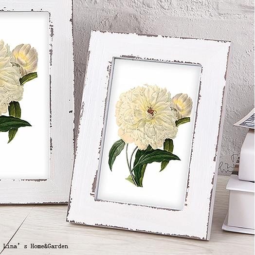white antique picture frames frames88 white