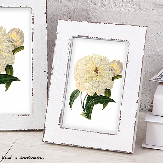 white antique frames