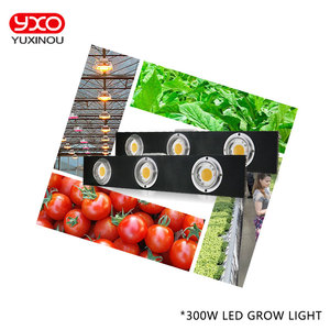 Image 5 - CREE CXB3590 300W COB Dimmable LED Grow Light Full Spectrum LED Lamp 38000LM=HPS 600W Growing Lamp Indoor Plant Growth Lighting