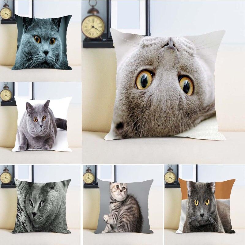 ⊱British shorthair gato Fundas De Almohada cubierta Ropa de cama ...