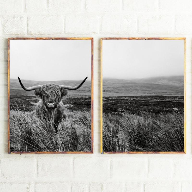 Highland Cow Canvas Art Prints Home Decor
