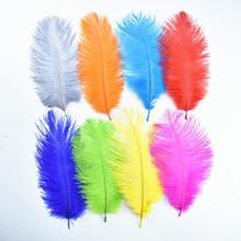 10 Pcs/Lot 20-25CM 8-10 Cheap Colored Ostrich Feathers for Crafts Plumes Jewelry Making Wedding Decoration White Plumas Clothes