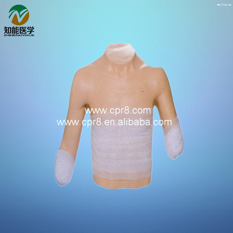 BIX-LV13 Eedical Fully Functional Upper Part Human Body Bandaging Manikin MQ111 bix lv12 fully functional the lower half body bandaging model