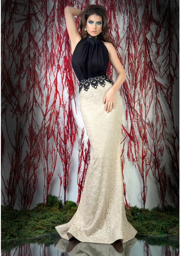 Special Occasion Formal   Dress   Lace   Evening     Dresses   High Collar Mermaid