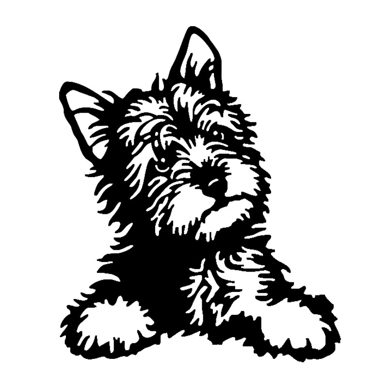 12.7*15.2CM Yorkie Dog Vinyl Decal Cute Waterproof Car Stickers Car Styling Decoration Accessories Black/Silver S1-0469