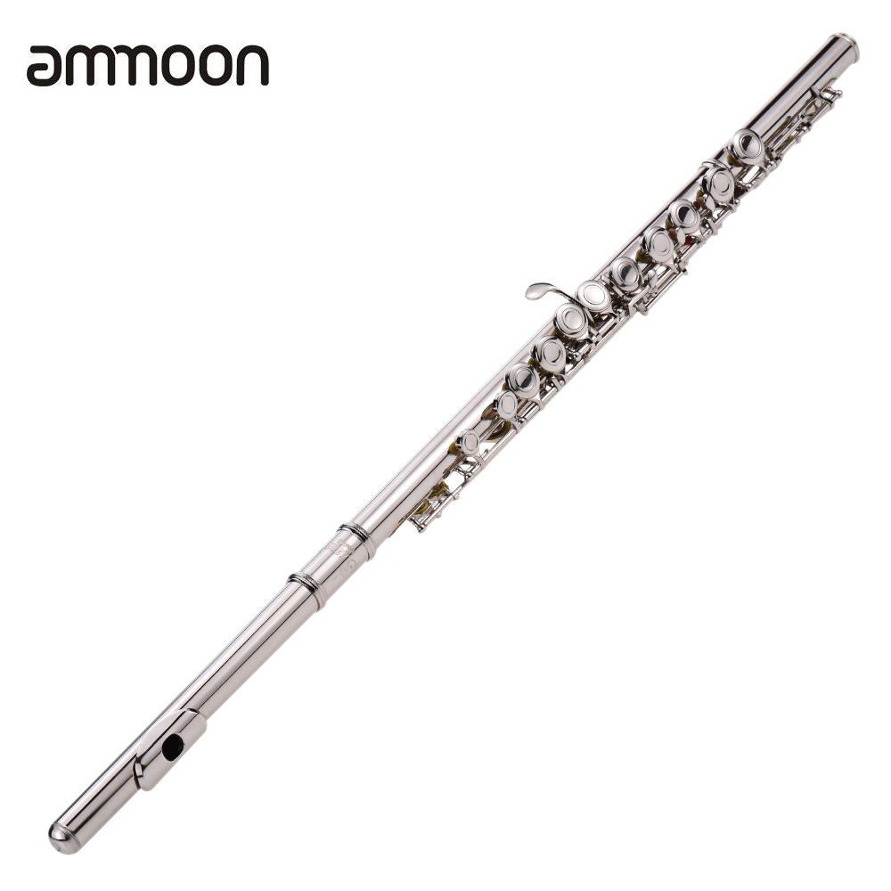 Western Concert Flute Silver Plated 16 Holes C Key Cupronickel Woodwind Instrument With Cleaning Cloth Stick  Bag