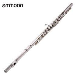 Concerto ocidental 16 Furos C Flauta de Prata Banhado A Chave Cuproníquel Instrumento de Sopro com Saco de Pano de Limpeza Vara