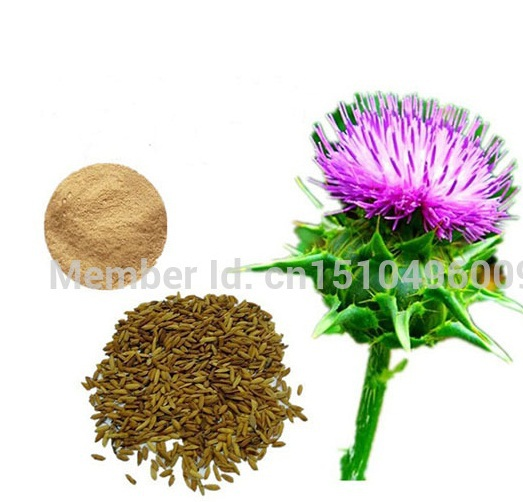 Milk thistle extract powder 80% silymarin kronasteel bella 600 inox