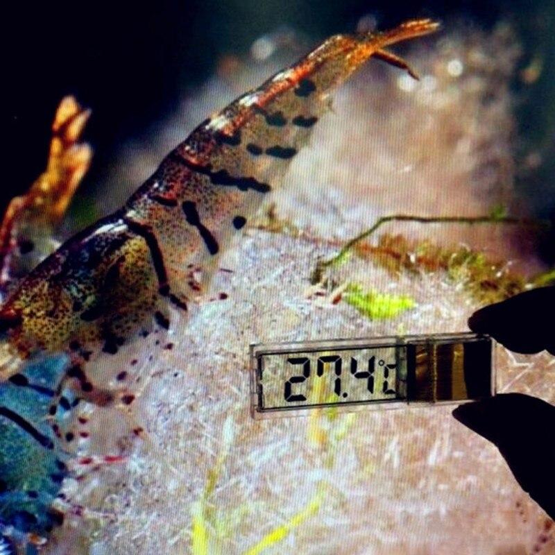 6 style LCD Digital Fish Tank Aquarium Thermometer Marine Water Terrarium Accessories Temperature Measurement Tools 2