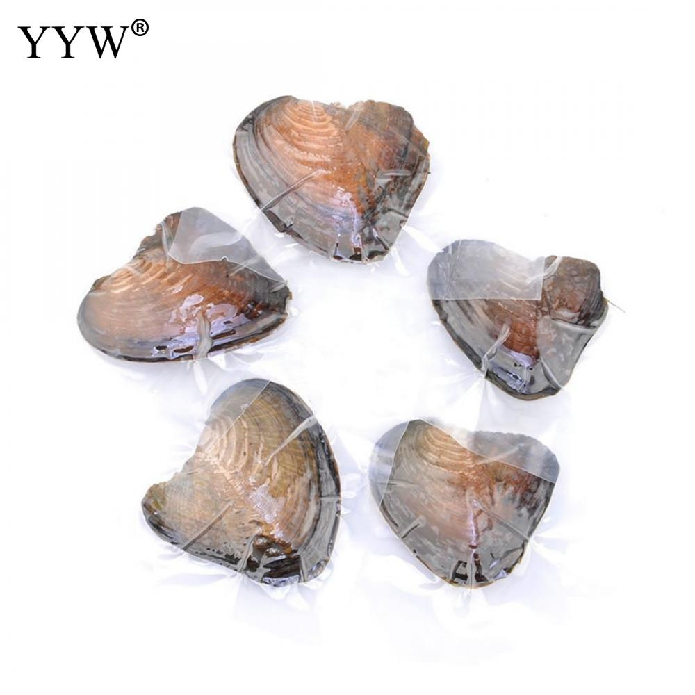 10PC/Lot 7.5-8mm Mixed Colors Vacuum pack Oyster Pearl Girl Gift individually wrap One Mussel Shell Mother Oyster with One Pearl