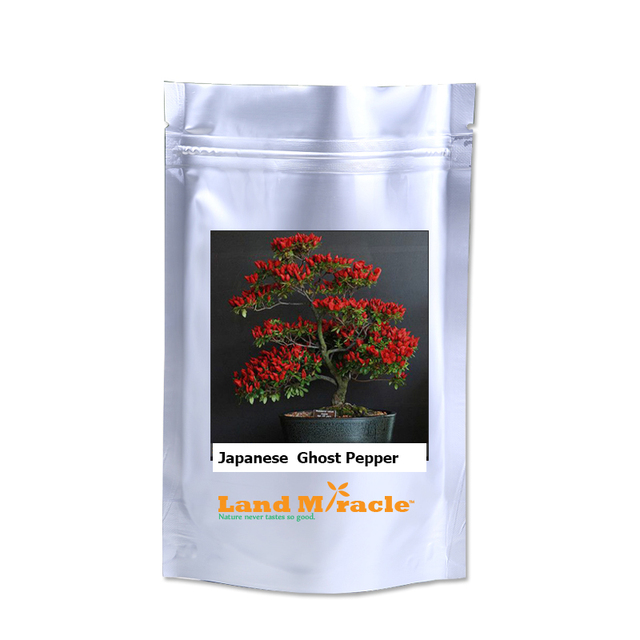 Fresh Rare Trinidad Moruga Scorpion Organic Vegetable Seeds