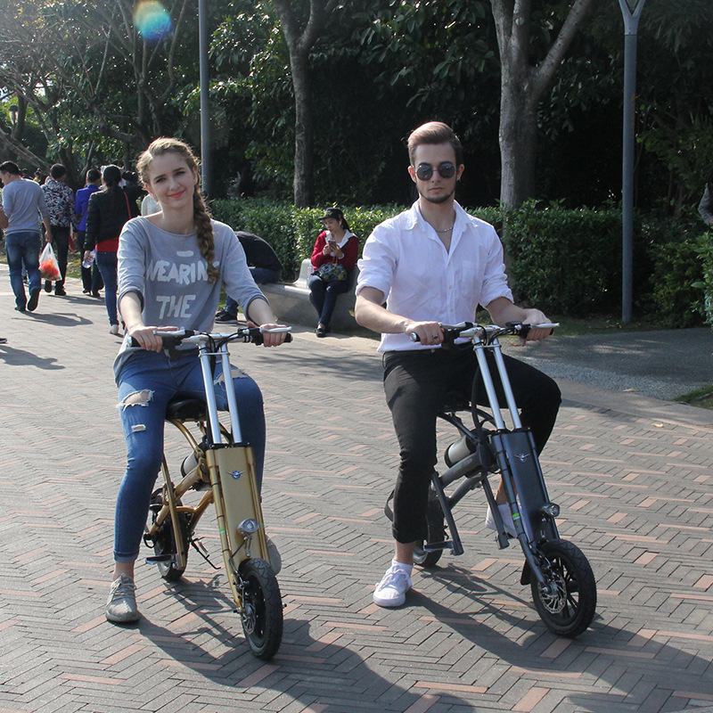 foldable electric scooter 8AH battery