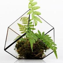 Bonsai Free Shipping  Polyhedron Clear Glass Geometric Terrarium Box Tabletop Succulent Plant Micro Landscape Terrarium