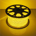 8M led lighting strip lights+ strip plug 480 LED 5050  Waterproof Cool White Warm white red yellow green 220V