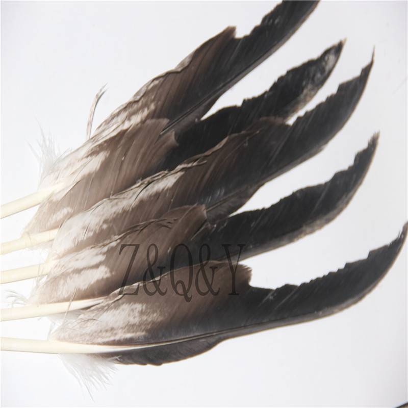 Z&Q&Y Natural Precious 2 50 60CM/20 24 Inch Eagle Cutter Feather DIY Decoration Collection Feather