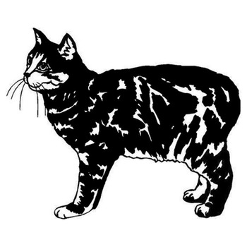 13*10.7CM Manx Cat Vinyl Decal Endearing Car Stickers Car Styling Bumper Accessories Black/Silver S1-1393 image