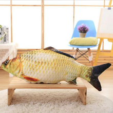 2016 New Child plush Toys 60cm 100cm Spoof The Whole Person Carp Pillow Cartoon Doll Simulation Salted Fish Gift Free Door